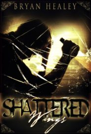 Shattered Wings : Bryan Healey