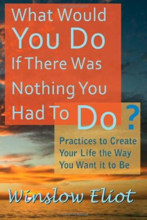 What Would You Do If There Was Nothing You Had To Do? : Winslow Eliot