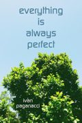 Everything Is Always Perfect : Ivan Paganacci