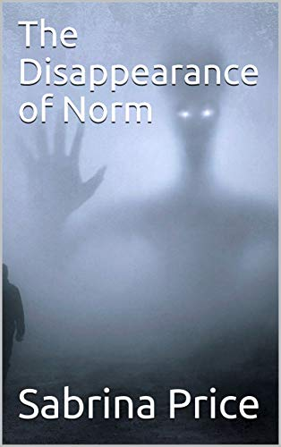 The Disappearance of Norm : Sabrina Price