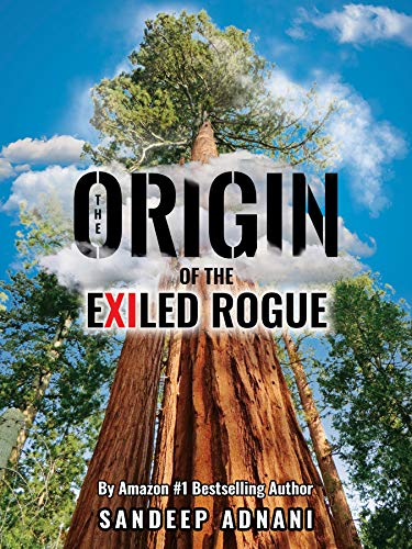 The Origin of the Exiled Rogue : Sandeep Adnani